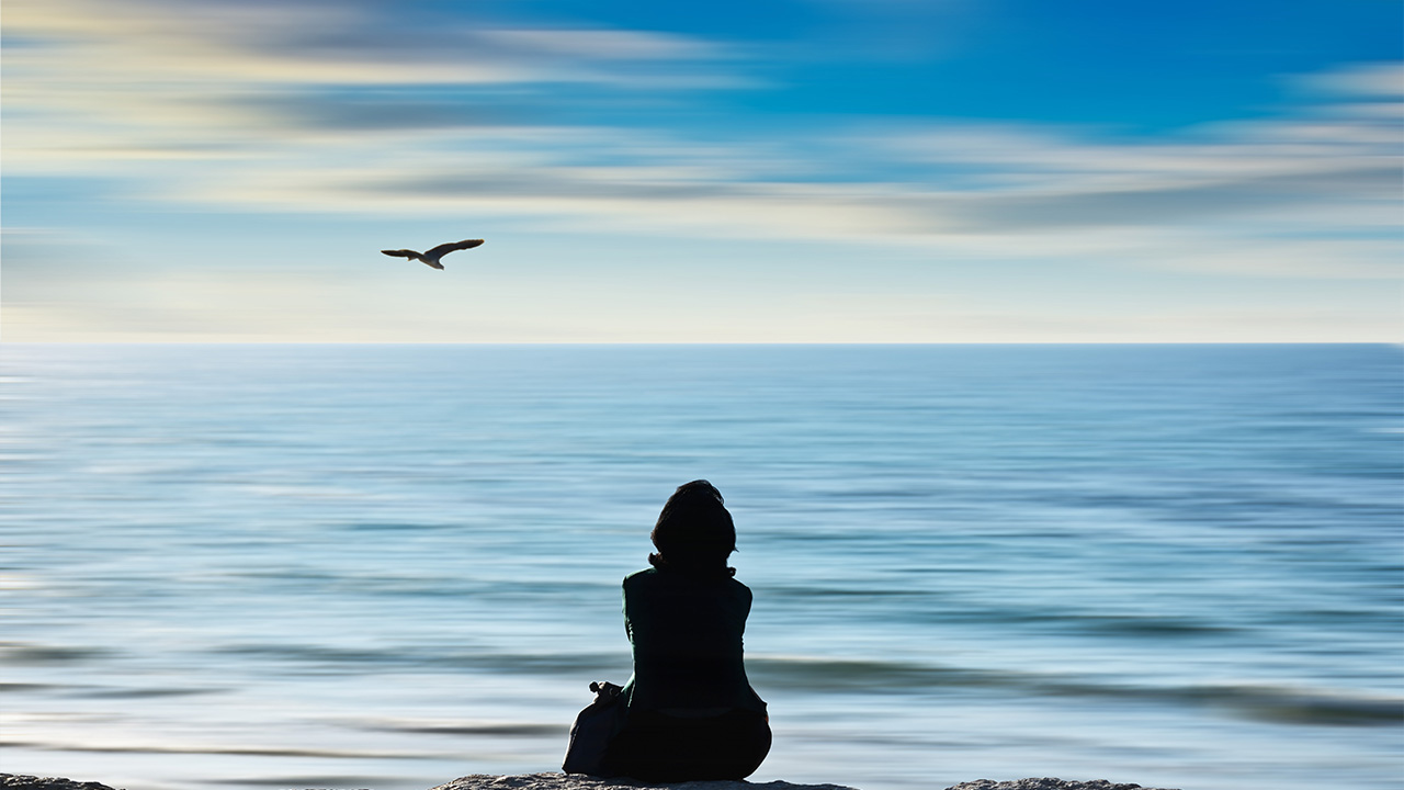 Falling Awake: The Art and Science of Mindfulness